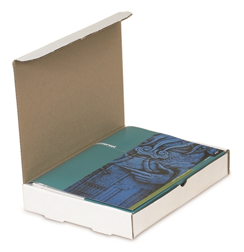 Protective Literature Mailers